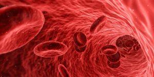ganoderma-fortalece-sistema-inmunologico